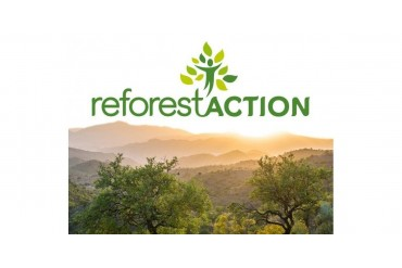 Projet reforest'Action
